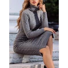 Solido Dolcevita Casual Lungo Stretto Abito maglione